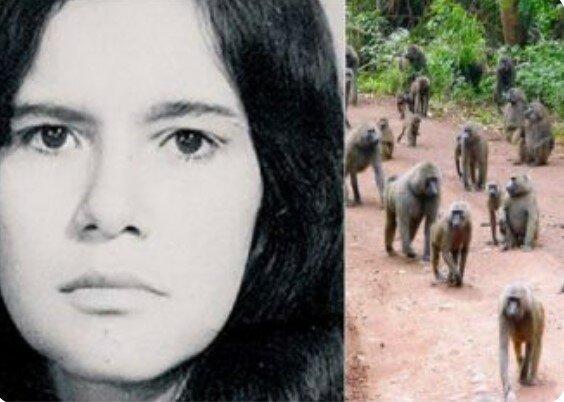 Příběh o Marině, kterou 5 let vychovávaly opice