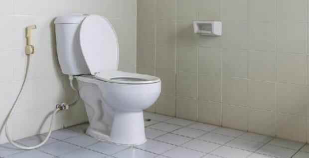 """""""Jenom 5 minut a záchodová mísa bude vonět svěžestí celý měsíc"""": trik chytré hospodyně"""
