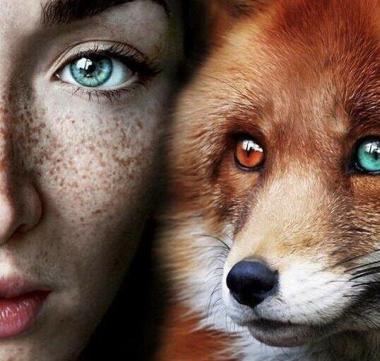 Ženský horoskop: na jaké zvíře podobné každé znamení zvěrokruhu