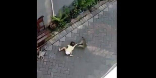 Opice na motorce se pokusila ukrást malou holčičku