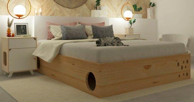 Designéři navrhli ideální postel pro milovníky koček