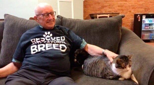 """""""Starý muž spí s cizími kočkami"""": v útulku povídají podrobnosti o svých touhách"""