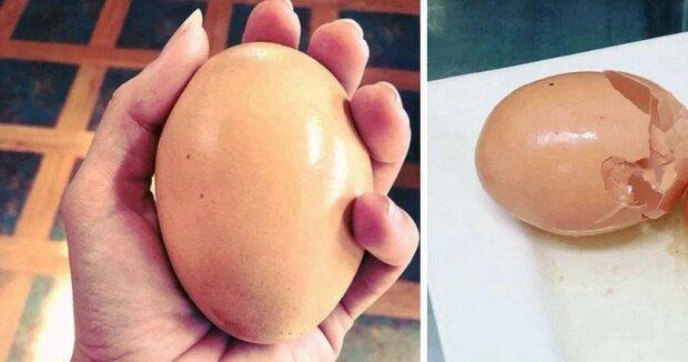 """""""Nějaký žert přírody"""": Farmář byl v rozpacích, když viděl kuřecí vejce třikrát větší, než obvyklé"""