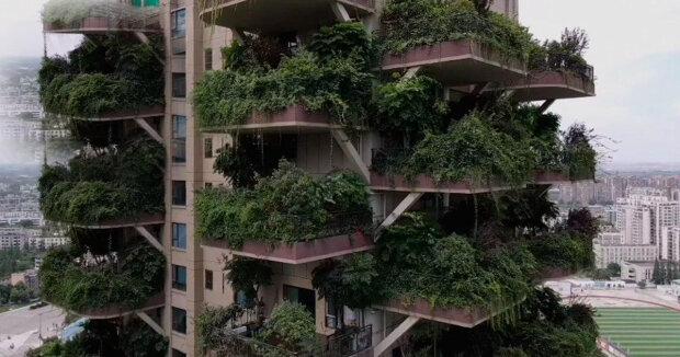 Experimentální projekt ekologického domu selhal: proč obyvatelé nekupují byty v ekodomu