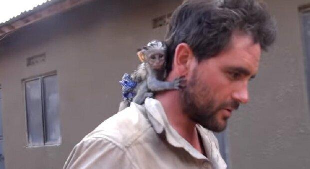 """""""Vděčnost maličký nezná hranice"""": Muž zachránil opici, ona bude moct plnocenně žít"""