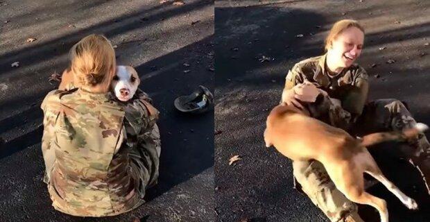 """""""Bez slz se to neobešlo"""" : dva roky se pes nemohl setkat se svou majitelkou"""