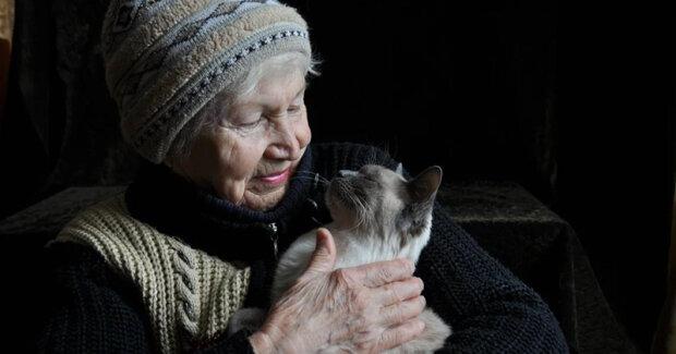 """""""Moje kočka často porodí, vyléčí ji"""": starší žena předala zvíře veterinárnímu lékaři, což ho velmi překvapilo"""
